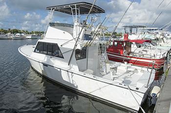 Deep sea fishing charters key west for Key west deep sea fishing charters