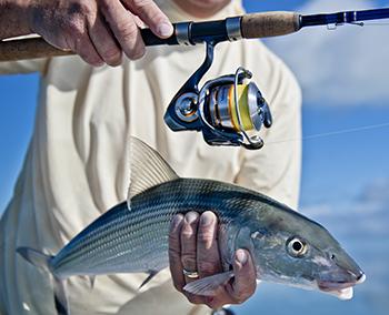 Bonefishing charters key west for Bone fishing key west